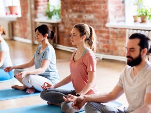 Création sites internet, Graine de yogi